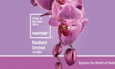 Radiant Orchid Radiant Orchid: Pantone's color of the year 2014 radiant orchid HomeSlider Final 234x141