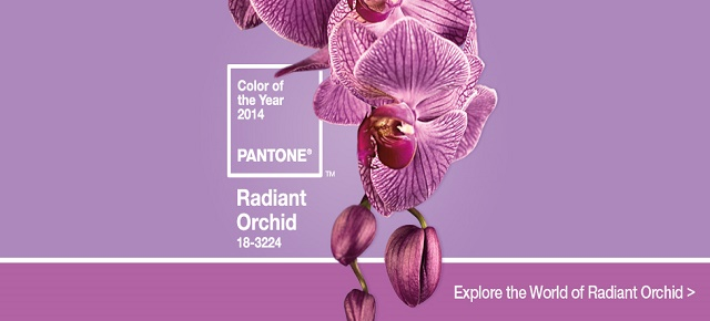 Radiant Orchid Radiant Orchid: Pantone's color of the year 2014 radiant orchid HomeSlider Final