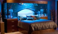 AQUARIUM DESIGN AQUARIUM DESIGN: 10 MUST-SEE IDEAS Aquarium Design3 234x141