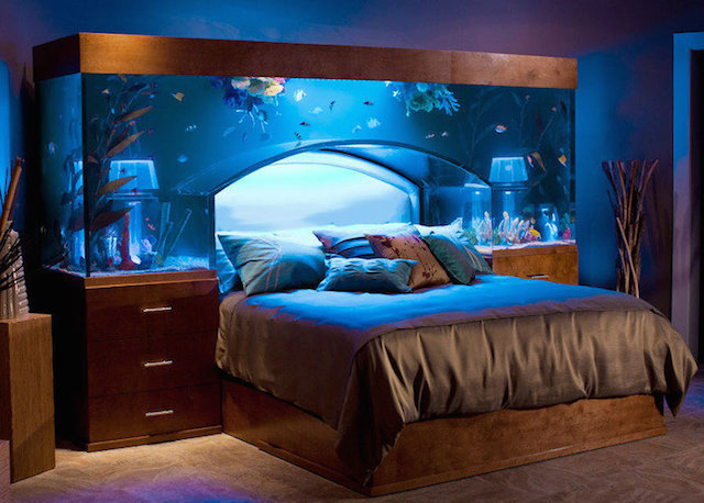 AQUARIUM DESIGN AQUARIUM DESIGN: 10 MUST-SEE IDEAS Aquarium Design3