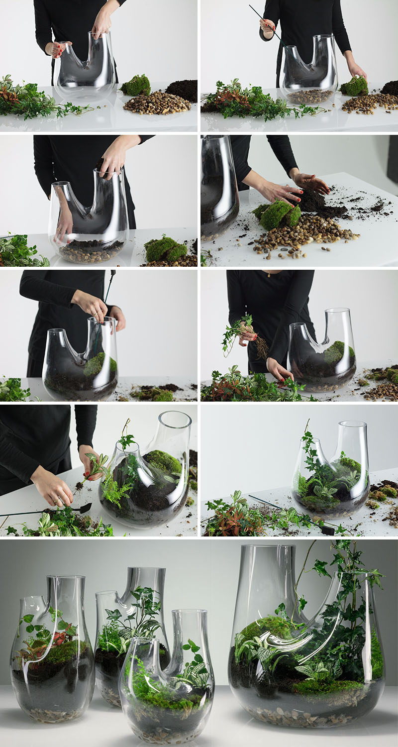 Plant Is All You Need In Your Home Interior Decor! 6