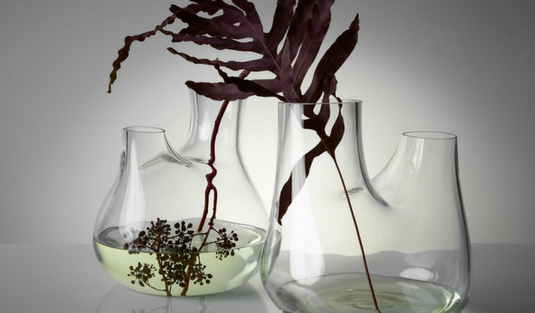 Plant Is All You Need In Your Home Interior Decor!
