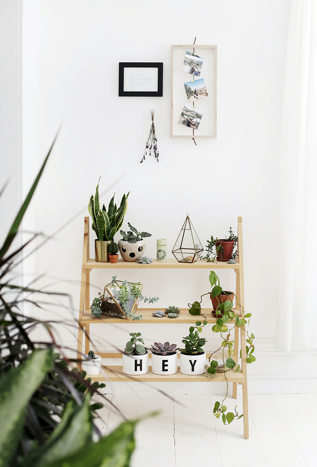 bedroom trends Get Comfortable And Check These 6 Bedroom Trends For 2019 greenery