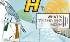 What's Trending Now Moorboards All Around 7 trending now What's Trending Now: Moodboards All Around! Whats Trending Now Moorboards All Around 7 2 234x141